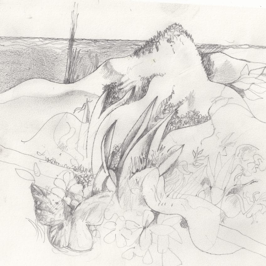 Jekyll Island Drawing (01)